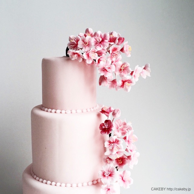 Sakura Cake -CAKEBY